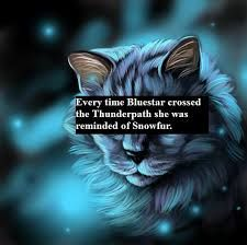Our lovely Bluestar. She welcomed the great Firestar into ThunderClan, even through all of her hardships. Her father was Stormtail and her mother was Moonflower. She lost her sister, Snowfur, after she got hit by a monster on the Thunderpath. She had kits with a RiverClan cat, Oakheart, and she saw them raised in RiverClan. Her son is Stonefur and her daughters are Mosskit and Mistystar.