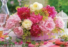 fiori estivi - Cerca con Google
