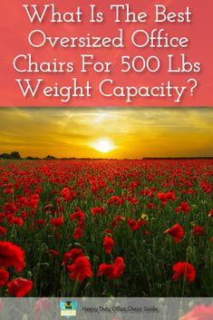 Are you looking for a oversized ergonomic office chair for a weight capacity of 500 Lbs? Then click the image to find out more
