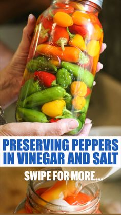 Pressure Canning Recipes, Home Canning Recipes, Fermentation Recipes, Cooking Recipes, Healthy Recipes, Bacon Recipes, Pickled Vegetables Recipe, Canning Vegetables, Canning Food Preservation