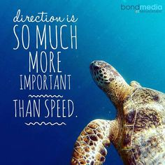 Direction is so much more important than speed  For more......... follow me on Instagram xx