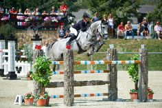ASTON Chloe, (GBR), MERQUSIO_2766_HB Hunter Jumper, Show Jumping, Chloe, Horses, Horse, Dressage, Barrel Racing