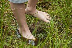 Wandelroute over het laarzenpad, bij Bezoekerscentrum De Wieden | Natuurmonumenten
