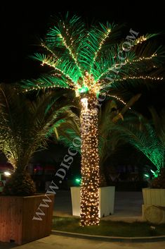 Beautiful Artificial Outdoor Palm Tree With A Beautiful Realistic Look And Finish.  Includes LED Lights All Around The Trunk And Along The Branches For A  Magnificent ...
