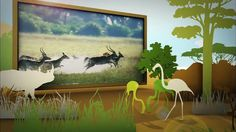 동물의 세계 - 북극곰은 진화하는가? (1) 11월 17일 (화) - http://heymid.com/%eb%8f%99%eb%ac%bc%ec%9d%98-%ec%84%b8%ea%b3%84-%eb%b6%81%ea%b7%b9%ea%b3%b0%ec%9d%80-%ec%a7%84%ed%99%94%ed%95%98%eb%8a%94%ea%b0%80-1-11%ec%9b%94-17%ec%9d%bc-%ed%99%94/