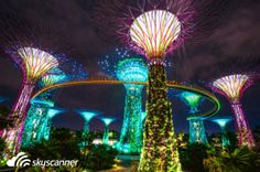 """Singapore is a city that has """"everything""""; fabulous shopping, top notch restaurants, legendary hotels and more. Here is our essential top ten things to do in Singapore! Singapore Tourist Spots, Singapore Travel, Tokyo Travel, Asia Travel, Tokyo Trip, Travel Info, Stuff To Do, Things To Do, Singapore Garden"""
