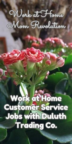 Work at Home Customer Service Jobs with Duluth Trading Co.  / Work at Home Mom Revolution