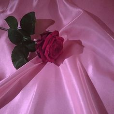 rose, pink, and aesthetic image Red Aesthetic, Aesthetic Photo, Aesthetic Pictures, Aesthetic Roses, Pastel Grunge, Pastel Pink, Lilac, Purple, No Rain