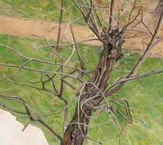 I love the intensely observed quality of this tree portrait by British artist Lucian Freud. It feels like a tree he knew well. Maybe he saw it every day when he glanced out of his studio window?