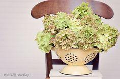 Simple DIY Dried Flower Arrangement
