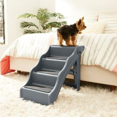 Frisco Foldable Nonslip Pet Steps, Charcoal Mini Rex Rabbit, Dog Travel Accessories, Animal Pound, Dog Stairs, Stuff For Free, Pet Steps, Wooden Animals, Dog Carrier, Hard Floor