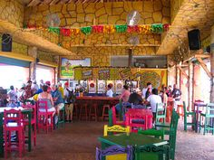 Fat Tuesdays Bar and Restaurant - Cozumel, Mexico...Brings back memories of aunt al