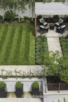 Small garden design - lovely use of pale stone and greenery - Buxus (boxwood) ball topiary and silver birch
