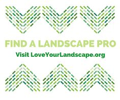 Don't try this a home - know when to ditch DIY and call a landscape professional