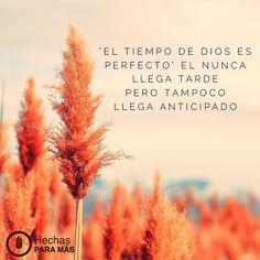 Dios siempre llega a tiempo. Sus tiempos son perfectos.