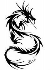 tribal chinese dragon tattoo   Torcho Images