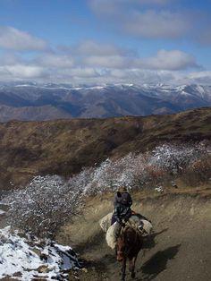 Horse Trekking in Songpan, Sichuan Province, China