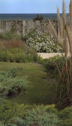 Plants, Blog, Gardens, Coastal Gardens, Argentina, Scenery, Blogging, Plant, Planets