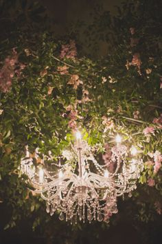 Secret Garden Party, Tonys, Chandelier in Tree