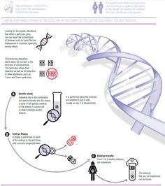 Preimplantation Genetic Diagnosis Sex Selection 99
