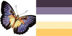 Палитры, вдохновленные бабочками