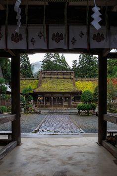 京都の紅葉2015・摩氣神社の赤と黄色 : 花景色-K.W.C. PhotoBlog