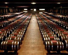 Cantine Romagnoli | Home page I luoghi dei vini Cantine e acetaie Lini Oreste e figli