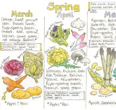 We plan to enjoy all of the fruits and veggies when they are in season...asparagus, strawberries, sugar snap peas...Here's a great wall chart for those of you in the UK!