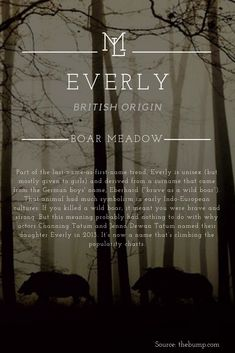 """Character Name: Everly British origin meaning """"Boar Meadow"""" - ggg Girl Names With Meaning, Baby Names And Meanings, Baby Girl Names, Boy Names, Unique Names With Meaning, Unusual Names, Pretty Names, Cute Baby Names, Everly Name"""