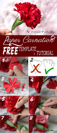 Paper Embroidery Free template and tutorial to make paper Carnation, paper flowers tutorial, flower making tutorial Paper Flowers Craft, How To Make Paper Flowers, Giant Paper Flowers, Flower Crafts, Diy Flowers, Paper Flower Making, Paper Flowers Wedding, Origami Flowers, Craft Ideas