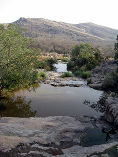 RANTHAMBORE NATIONAL PARK: Ranthambore National Park in Rajasthan, India