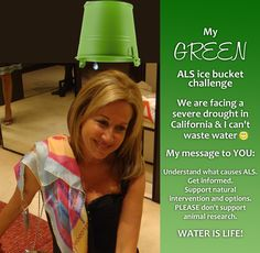 I rarely put a picture of myself   BUT I was challenged to do the #ALS ice bucket challenge.  Due to the severe #drought we are facing in California AND the many messages you sent, I decided not to waste water.  I hope you like my green and virtual version. ✒ Share | Like | Re-pin | Comment #StepIntoMyGreenWorld #STEPin2 #IceBucketChallenge #GivingBack #SaveWater #GreenLiving #GreenIceBucketChallenge