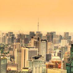 Skytree - @nutnosuke- #webstagram