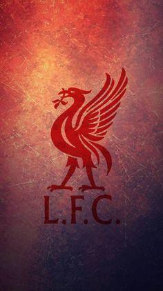 Sports – Mira A Eisenhower Liverpool Bird, Liverpool Stadium, Liverpool Memes, Liverpool Poster, Camisa Liverpool, Liverpool Vs Manchester United, Gerrard Liverpool, Anfield Liverpool, Master Suite