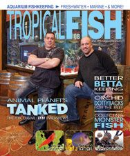 The October 2011 issue has articles on Animal Planet's Tanked, which isthe first aquarium reality TV show, as well as keeping bettas, keeping fire red shrimp, collecting in the Uruguay River, and more!