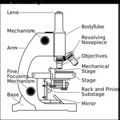 Parts of a Microscope View