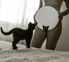 meow :) ...