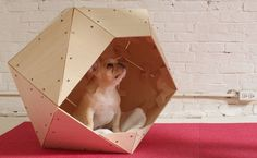 contemporary-geometric-diy-doghouse-5.jpg (600×369)