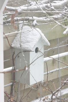 Bird house in winter.  Hurry up spring so the birds will cove back!