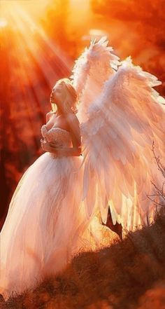 Anime Angel, Angel Gif, Angel Images, Angel Pictures, Beautiful Angels Pictures, Gifs, Angel Flying, Angel Artwork, Spiritual Images