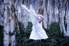 angel  白樺林がいいですね♪