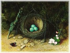 From the Feathered Nest - bringing a found nest inside.