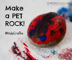 Easy Kids Craft - Make Your Own Pet Rocks