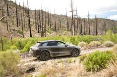 Porsche Just Can't Wait to Blow the Covers Off New Macan SUV, Releases Fresh Imagery - Carscoops