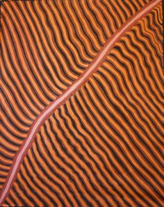 Buy Australian Aboriginal art paintings from Cooee Art Gallery Sydney, Australia's oldest Aboriginal art gallery. Aboriginal paintings, sculptures, artifacts and prints. Aboriginal Painting, Aboriginal Artists, Aboriginal People, Indigenous Australian Art, Indigenous Art, Gloria Petyarre, Abstract Expressionism, Abstract Art, Dynamic Painting