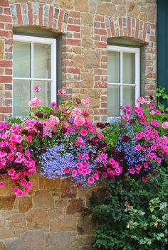 flower box of petunias, lobelia, geraniums & verbena
