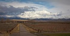 Vines and mountains by Kurt Johnson