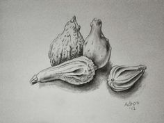 A drawing of Gourds. Commentary at the blog: http://artistadron.blogspot.com/2013/09/charcoal-sketch-of-gourds.html