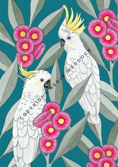 Has anybody ever had a paper cut from a manilla folder? They seriously hurt! 😆 Sulphur-crested cockatoos amongst the flowering gums. Print available in my Etsy shop, tap image or click the link in my bio 👆⠀ ⠀ Australian Native Flowers, Australian Birds, Watercolor Bird, Watercolor Landscape, Bird Artwork, Bird Drawings, Cockatoo, Bird Prints, Botanical Art