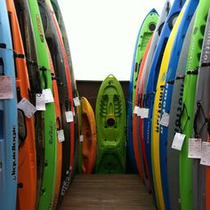 Kayaks! so many to choose from................